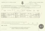 Michael (Darragh) Wilson Death Certificate